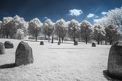 Hilly Fields Park (blackwoodse6) Tags: nikon infrared ir 720nm blue white trees foilage park brockley lewisham se4 se13 london uk england standingstones stonecircles hillyfieldspark nikond300 falsecolour bluesky londonparks southlondon southeastlondon