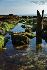 Rockpools (Bradley Moon) Tags: rockpools ocean sea reflection