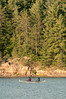 Boys out fishing (Jackx001) Tags: 2016 camptrip camping canada family fishing labourday nature ontario pickerelriver september weekend wild canoe