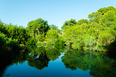Mirror (Angelo Pantazis) Tags: trees lake green nature water reflections landscape greece traveling