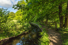 That Old Gate (Explore) (trevorhicks) Tags: canon canal gate path devon tamron tavistock 6d