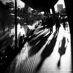 Travellers silhouette (akarakoc) Tags: sunset white black backlight zeiss t 50mm 14 hauptbahnhof zrich planar scharzweiss