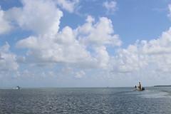 IMG_1715 (Florida Sea Grant) Tags: coral kids youth professor sponge scientists mahoganyyouth