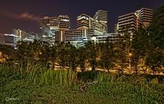 The Interlace. (alamsterdam) Tags: singapore theinterlace building2015 oma scheeren
