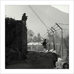 2010-02-22    (Yuriy Sanin) Tags:     2009  blackandwhite yuriy sanin lukla nepal airport  armed  soldier  submachinegun  girl  barbedwire   rocks road