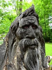Bigfoot Information