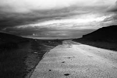 Fork in the Road (graemes83) Tags: road white black monochrome pentax vivitar bold lymepark 19mm rawtherapee