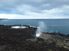 Spouting Horn Blowhole (jenesizzle) Tags: kauai hawaii paradise island outdoors landscape beach ocean blowhole spoutinghorn spoutinghornblowhole koloa