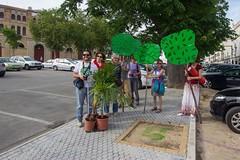Aqui falta un arbol (2) (andalucia.ecologistasenaccion) Tags: elpuertosantamaria aquifaltaunarbol ecologistas