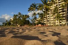 DSC_5239 (meganewens) Tags: maui iao needle sunset kaanapali lahaina hawaii digital black white waterfall
