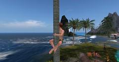 20160628 - PatrickUnicorn_13_001_001 (Patrick Unicorn) Tags: boy look overview beach tree sea shore island ocean