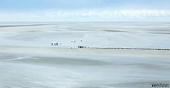 Low Tide (William MacGregor) Tags: sand sands low lowtide wet wetsands beach sea people water macgregorwilliam outdoor damncool yourbestoftoday high highview view scenic landscape dslr eos twop twtp sky horizon canon ngc montstmichel stmichel mont