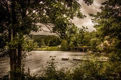 Overlooking the Loch (Bren Ryan (RyanPhotography)) Tags: loch lochlomond scotland inveruglas water landscape