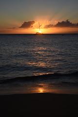 DSC_5274 (meganewens) Tags: maui iao needle sunset kaanapali lahaina hawaii digital black white waterfall