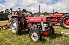 IMG_3376_Dacorum Steam & Country Fayre 2016 (GRAHAM CHRIMES) Tags: dacorumsteamcountryfayre2016 dacorumsteamrally 2016 dacorumrally dacorumsteam pottenend steamrally steamfair showground steamengine show steam traction transport tractionengine tractionenginerally heritage historic photography photos preservation photo classic country countryshow vintage vehicle vehicles vintagevehiclerally vintageshow wwwheritagephotoscouk dacorumrally2016 masseyferguson 135