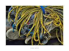 Fishing net. (vinoorajan) Tags: fish net cherai kerala beach shore india vinoo rajan nikon d7000