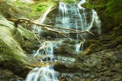 Moss Glenn Fallls (jasohill) Tags: wood moss falls nature vertical morriston 2016 town us glenn adventure waterfall vermont golden america color flow photography