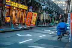 MEMORY OF TOKYO (brijjour) Tags: japon tokyo voyage couleur sumo extrieur