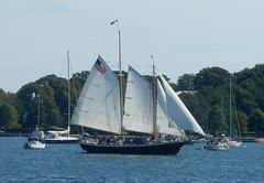 Sailing (RockN) Tags: sailing newengland rhodeisland newport sailsevenseas