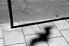 31052015 (M N Edwards) Tags: shadow bird beach 35mm seaside nikon pavement seagull streetphotography pole aberystwyth d3000