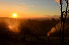 Yarragon South (phunnyfotos) Tags: autumn sunset sun weather rural garden nikon sheep farm smoke australia victoria vic gippsland burnoff strzeleckiranges burningoff westgippsland d5100 strzeleckis yarragonsouth nikond5100 phunnyfotos
