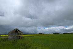 Unsettled weather (Len Langevin) Tags: landscape prairie abandoned old building canola wheat storm clouds alberta canada nikon d300s tokina 1116