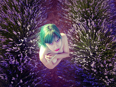 Purity / Pureza (pasotraspaso. Jesus Solana Fine Art Photography) Tags: green beauty lady hair purple fineart lavender belleza violeta purity pureza lavandas