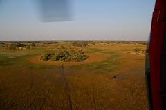 View From Above II (www.mattprior.co.uk) Tags: adventure adventurer journey explore experience expedition safari africa southafrica botswana zimbabwe zambia overland nature animals lion crocodile zebra buffalo camp sleep elephant giraffe leopard sunrise sunset