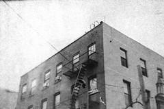 Williamsburg Brooklyn Building (forwardcameras) Tags: towerrollfilmcamera 120 tmax400 caffenolc brooklyn