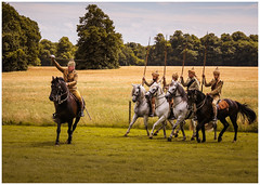 Following orders (S.R.Murphy) Tags: horse brodsworthhall horsemen soldier englishheritage canon6d canon24105mm riding animal stuartmurphy