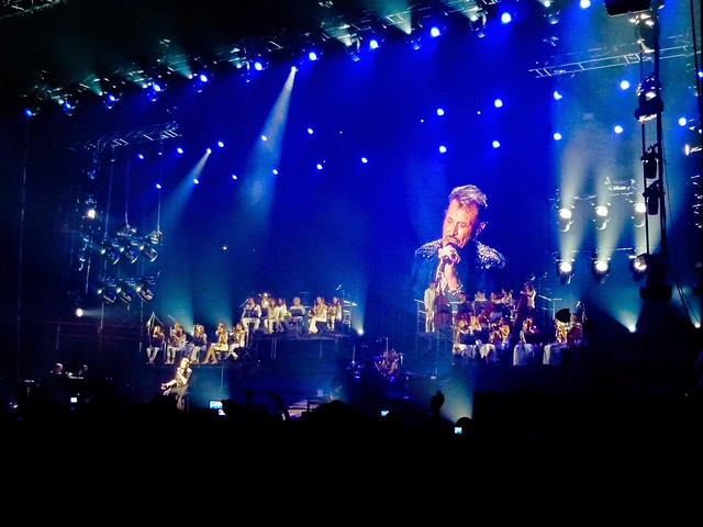 Johnny Hallyday - Born Rocker Tour - Bercy, Paris (2013)