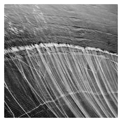 Square Stories (Naveen Gowtham) Tags: squarestories noir travel fineart naveengowtham naveen ngc naveeng nationalgeographic naveensphotography nature ng naveengowthamphotography naveenrajg naveenrajgowthaman gnaveen gnaveenraj lava lavapixelv2 bw blackwhite blackandwhite blacknwhite beach bessie mono monochrome monotone marina marinabeach