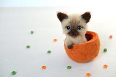 cat-36-1 (Fenekdolls) Tags: toy cat kitten wool felt craft felting art