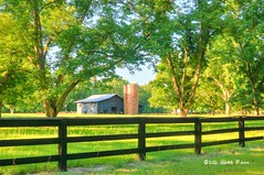 Bucolic Scene-304201 (glennrossimages) Tags: bucolic farm barn silo green fence pecan south carolina rural