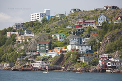 The Battery (Loops666) Tags: thebattery thebatteryhotel hill houses rugged cliffs ocean thenarrows stjohns newfoundland city colorful