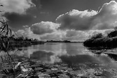 Wolken (Martijn_68) Tags: 1260mm wolken zwartwit clouds spiegelplas