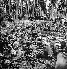 Exhausted Marines on Guadalcanal 1942 (Peer Into The Past) Tags: peerintothepast thegreatestgeneration supportourveterans supportourtroops semperfi marinecorps usmc marines 1942 solomonislands guadalcanal history wwii ww2