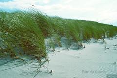Ostseewind