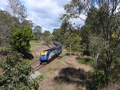 NSW trainlink XPT departing Wingham (damo2016 photos) Tags: nsw trainlinknsw xpt xpt2013 xp2013 xpt2015 xp2015 departing wingham central 2016