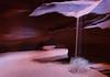 Upper Antelope_0072_WEB.jpg (Jeff Woodard Photography) Tags: arizona antelopecanyon slotcanyon colors northernarizona page pageaz pagearizona shadows sandfall tumbleweed upperantelopecanyon sand