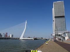 Rotterdam087
