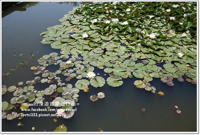 벽초지문화수목원22