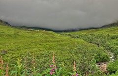 In The Clouds (jack4pics) Tags: alaska independencemine hatcherspass clouds summer fireweed