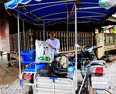 ,, Morning Handoff ,, (Jon in Thailand) Tags: donation nikon jungle nun kibble 10k nikkor blue d300 175528 dogfood dogkibble themonkeytemple red green yellow buddhism buddhistnun sidecar scootersidecar junglejournalist ribs brokenribs roadrash streetjunglestyle littledoglaughedstories