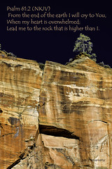 Psalm 61.2 the rock that is higher than I (TAC.Photography) Tags: psalm612 scripture bibleverse zionnationalpark redrockcountry rockwall rockface christianverse nikon lonetree