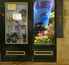 Pequeno Jardim (Silvia Naccarati) Tags: flowers portugal lisboa lisbon jardim pequeno florista