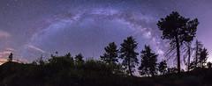 The Milky Way over Noble Canyon in Mount Laguna (slworking2) Tags: california unitedstates us clevelandnationalforest milkyway mountlaguna vialactea panorama trees pine