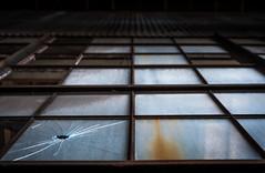 Japanese screen (Frdric Poirot) Tags: dogpatchphotowalk screen window glass pier70 fujifilm fuji xpro2 sf san francisco sanfrancisco brokenglass warehouse photowalk filckr peak design