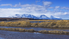 natural beauty and breathing space (lunaryuna) Tags: iceland northiceland coast coastallandscape marsh mountainrange fjord northfjords panorama silence solitude natureintact breathingspace boggrass snowtoppedmountains spring season seasonalchange sky clouds cloudscape weather lunaryuna he lig