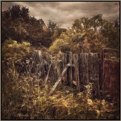 old fence. (odinvadim) Tags: mytravelgram iphoneart iphone sunset iphoneography iphoneonly evening painterlymobileart snapseed flowers textures editmaster landscape textured